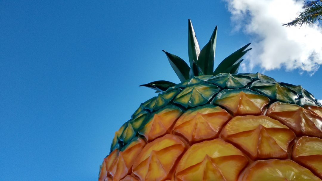Big Things Bucket List: The Big Pineapple