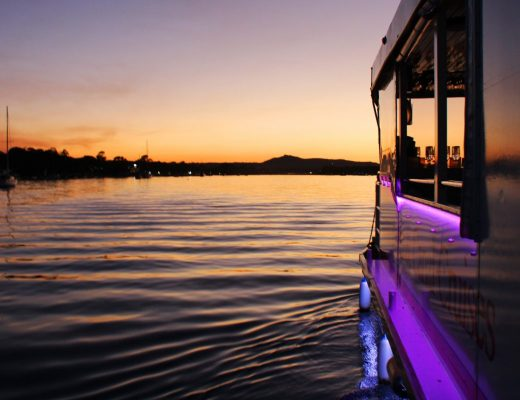 Noosa River cruises: Noosa River and Canal Cruises