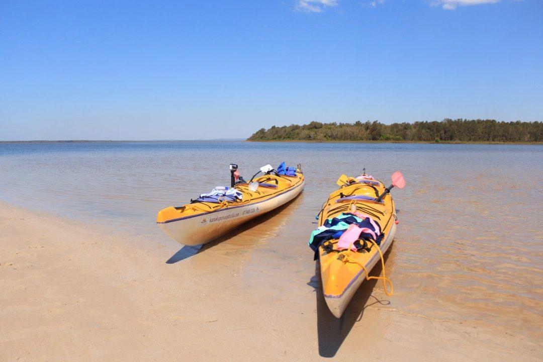 Kayaking in the Noosa Everglades.