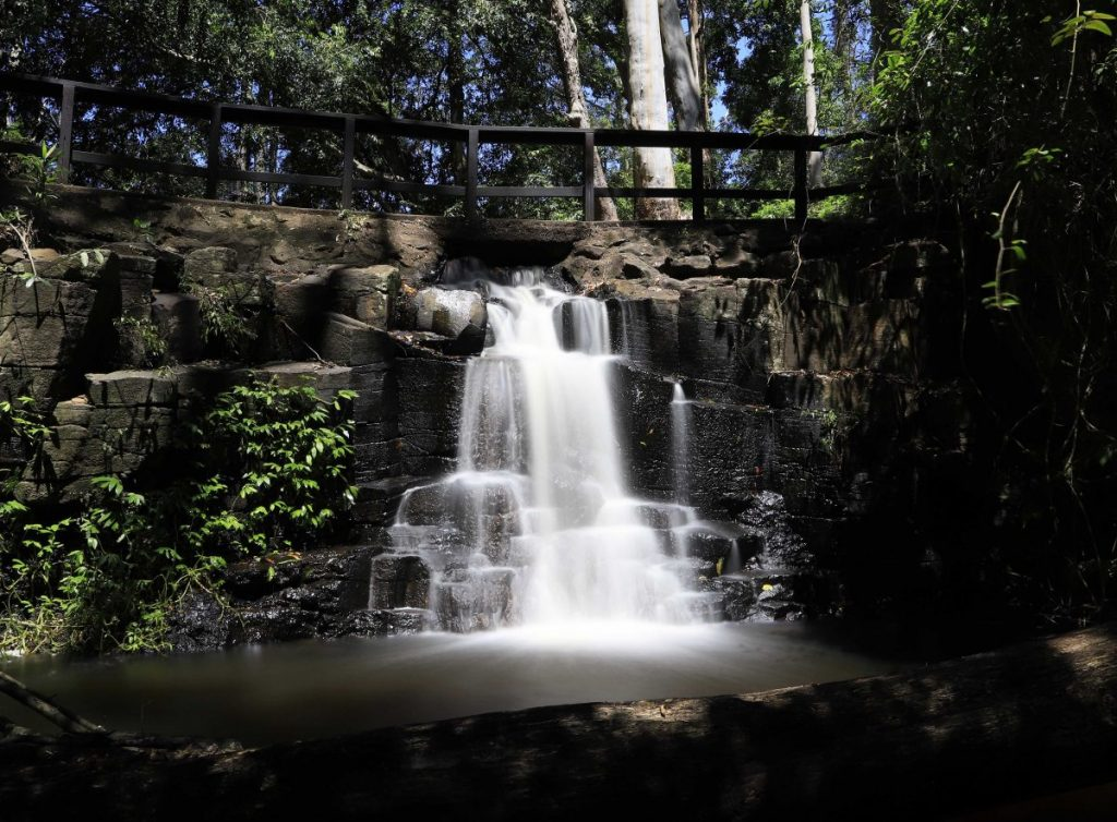 Waterfalls on the Sunshine Coast: Mapleton Falls