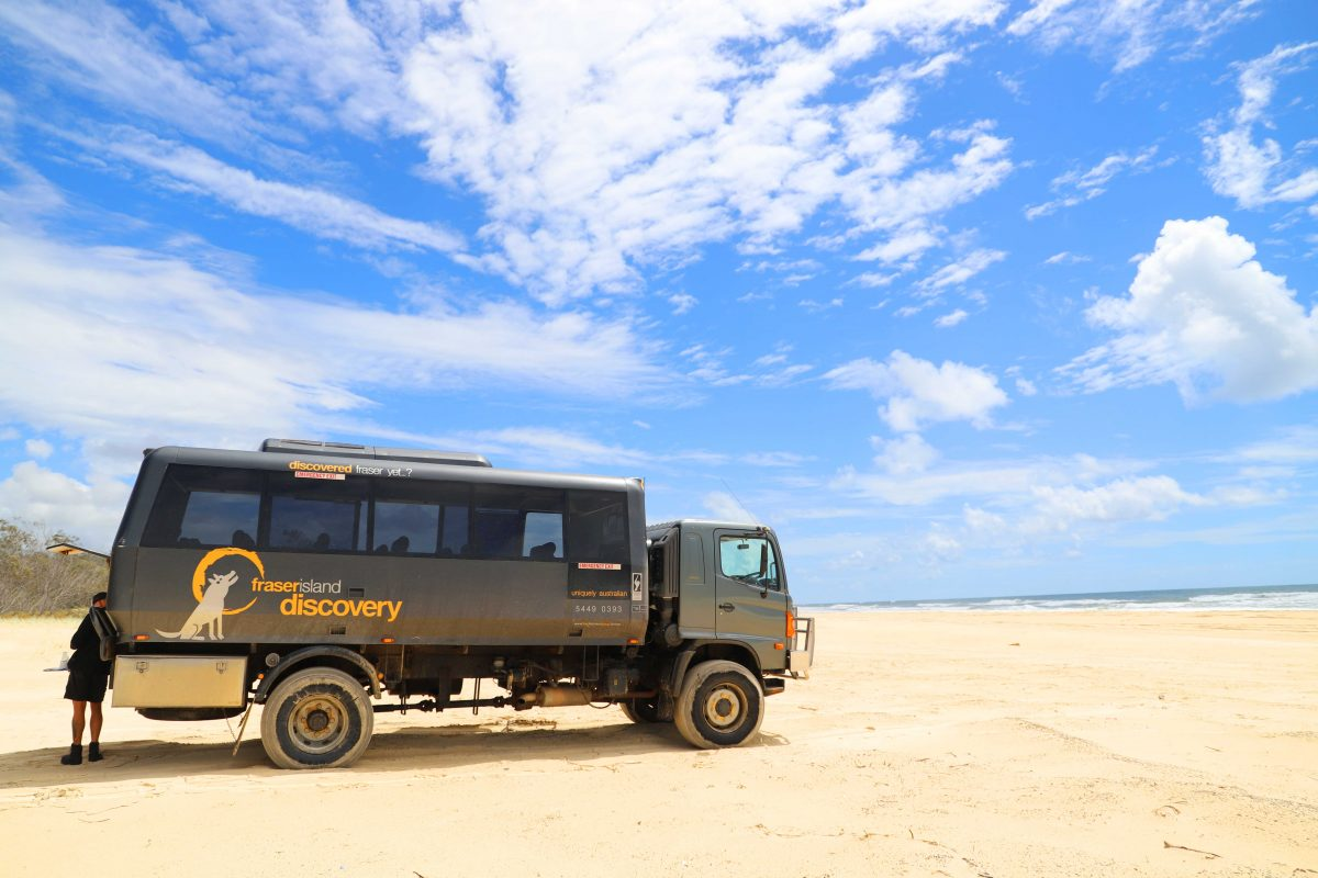 Fraser Island: Day tour with The Discover Group