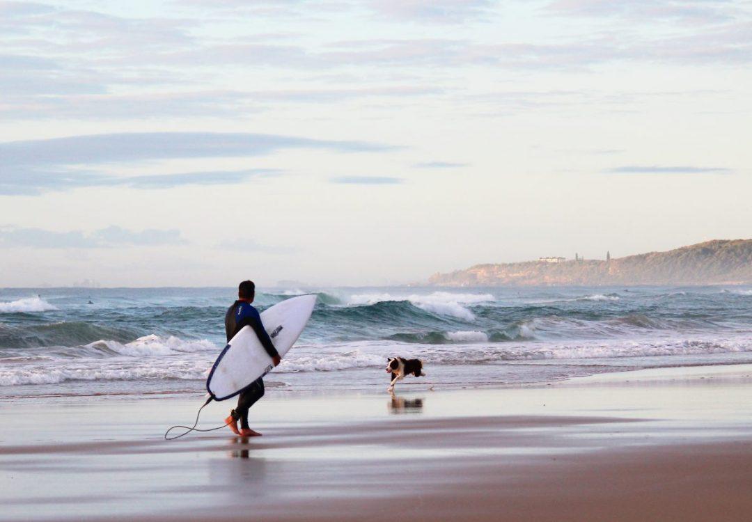Dog Beaches on the Sunshine Coast