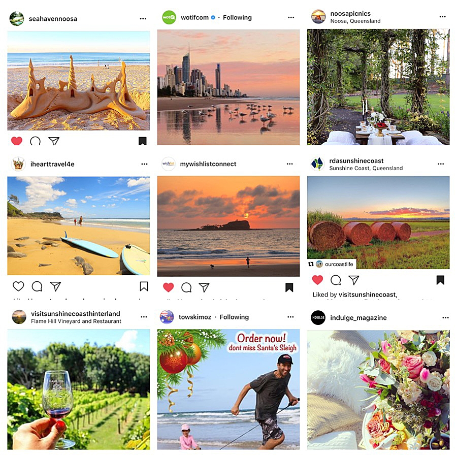 Some of Our Coast Life's images that have been regrammed.