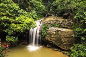 Buderim Falls, aka Serenity Falls.