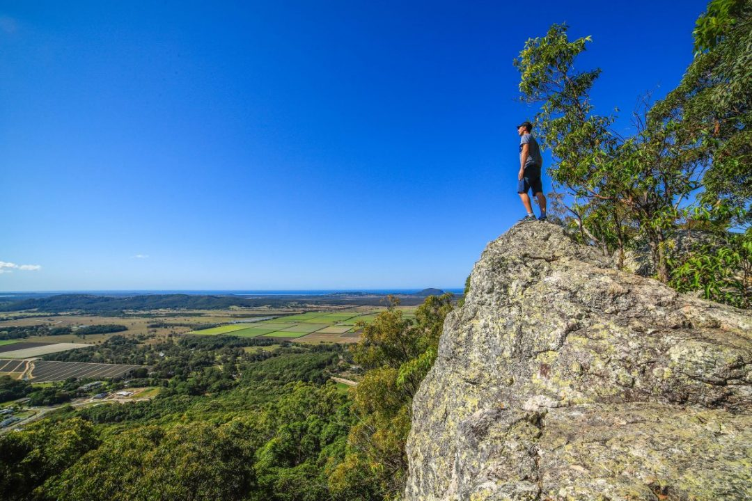 Hiking Mt Ninderry