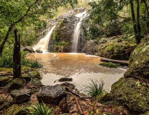 Robinson Falls at Nambour